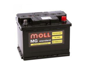 Купить в Воронеже аккумуляторы Moll MG Standard