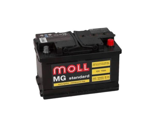 Купить аккумулятор Moll MG Standard 75 Ач обратной полярности в Воронеже
